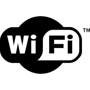 Модуль Wi-Fi WF-600